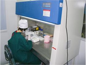HLA实验室